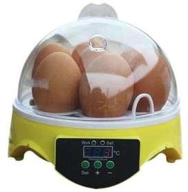 Inkubator mini tetas untuk 7 telur