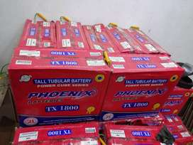 Narada batteries and Phoenix tubular batteries