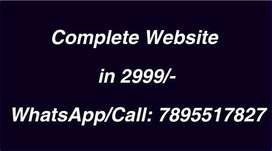 Website in 2999/-,free domain Registration & web hosting, 5 pages, seo