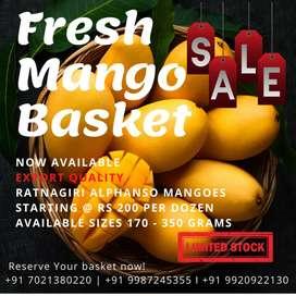 Alphonso Mangoes Fresh and Organic