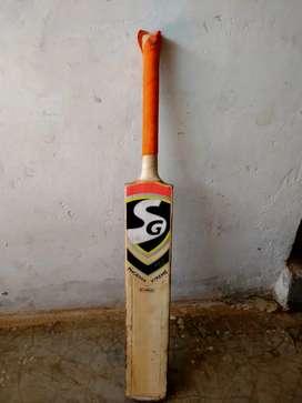 Cricket bat . Dues ball