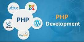 PHP Mysql Developer-9Yrs Exp in Web Developement seeking freelance job