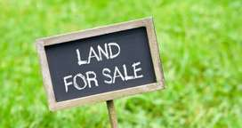 14 cent land for sale in KOLLIHILLS,NAMAKKAL