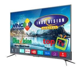 pay tv Indovision Mnc Vision parabola