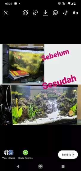 Jasa Pembersihan Aquarium Akuarium Aquascape Profesional Rumah Kantor