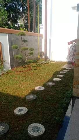 Pembuatan taman rumput dan kembang2 bonsai