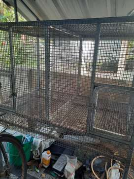 Cage for hen / Love birds Sale
