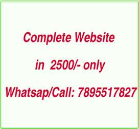 Complete Website in 2500/-, Free domain hosting,5 pages,SEO friendly