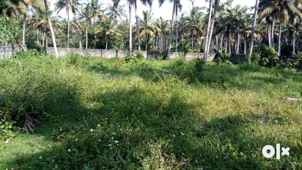 47cents residential plots in bapuji nagar pongummodu,trivandrum