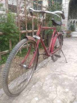 bicycle (for kids)