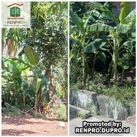 Jln Prof. Ali Hasyimi - Sewa Tanah Luas 600 m Lokasi Strategis B.Aceh