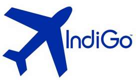 Required Staff In Indigo Airlines for full time job  we need only peop