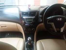 All Hyundai vehicle new
