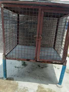 Old dog cage