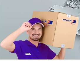 Delivery boy at DTDC Courier Services company