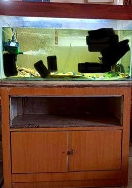 Fish Aquarium+ Cover+Table Wooden