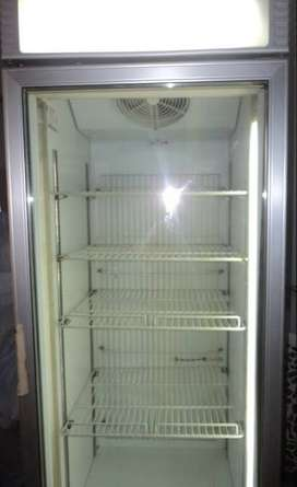 Commercial Upright Deep Freezer for ice cream (Imported)