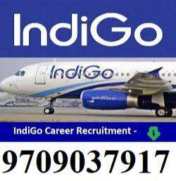 Urgent Hiring For Airport Ticketing Executive 12th pass