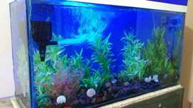 Aquarium 3ft/1ft, 8mm/10mm glass with all decoration and accessories.