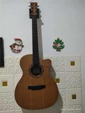 Gitar Martin & Co