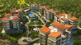 Available 2bhk flat for sale at old goa