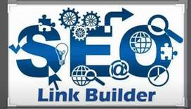 Off page SEO Expert. Linkbuilding