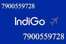 Vacancy Available in INDIGO AIRLINES LTD Company. =[