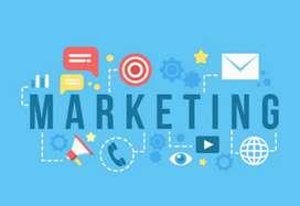 Marketing Staff (Parttime/fulltime)