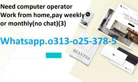 Need computer operator Work from home,pay weekly or monthly(no chat)11