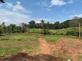 Residential land for sale at Chembarkki Aluva