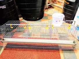 Hi tech chicken cage hen house