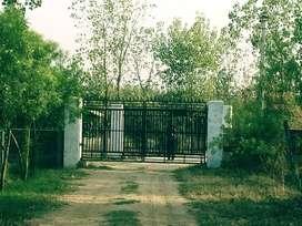 hariyali farms near hindon domestic airport