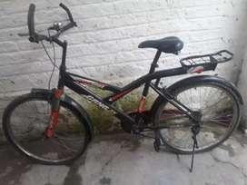 Gang sk company cycle
