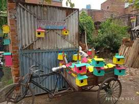 Birds huts
