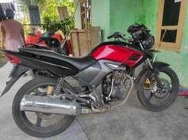 Honda tiger revo