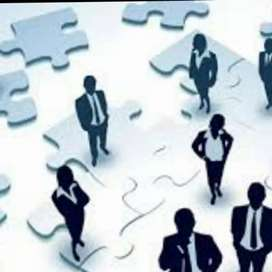 Executive Team Required