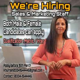 Marketing and sales staff
