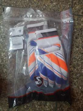 Sg pad and gloves
