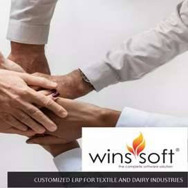 WinsSoft,  development