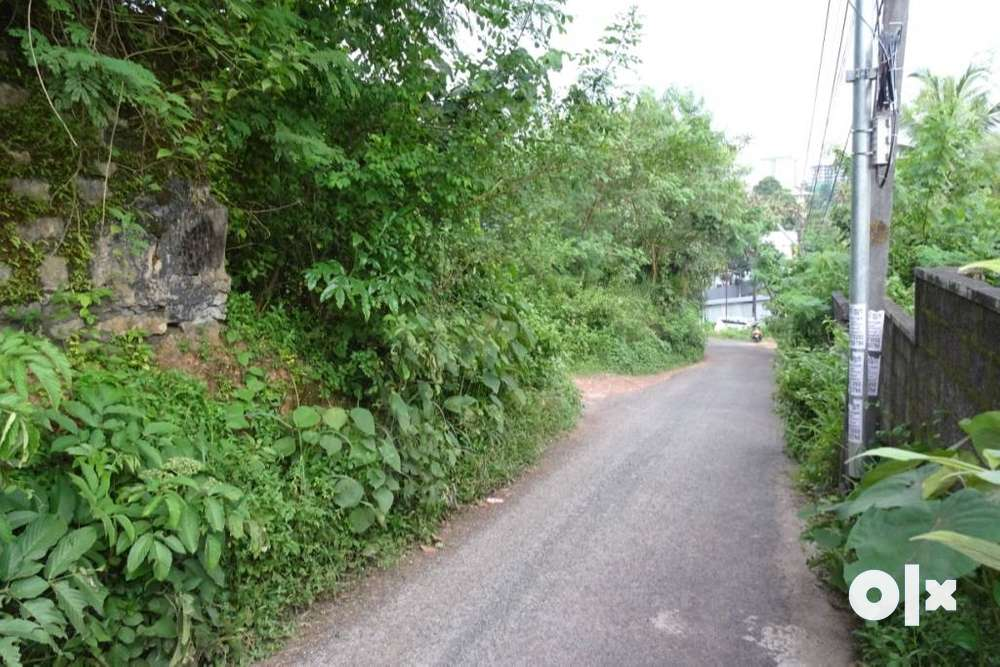 21 cent land at thrikkakara 700 meter from seaport airport road