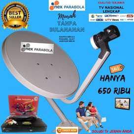 Antena TV Led menggunakan Parabola Mini Nex