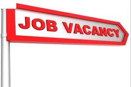 Hiring sales executive/ verification job