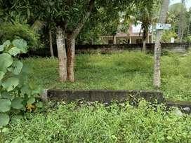 12cent plot for sale pullannivila Indhirajinagar