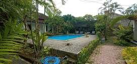 Hotel in central at lovina singaraja