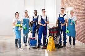 personal cleaning service & janitor rumah-apartement-perkantoran