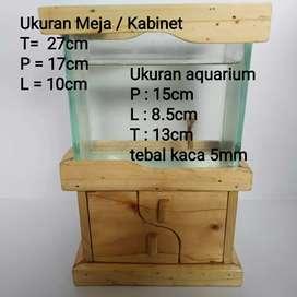 Aquarium / aquarium mini