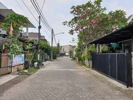 Rumah Cantik Siap Huni di Cluster Kiwi Bintaro Jaya