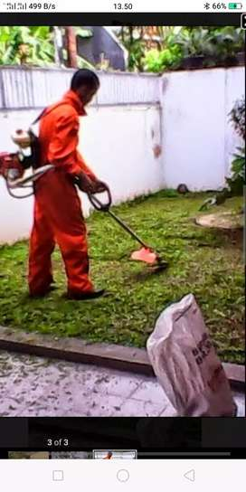 Tukang Potong rumput  jati bening bekasi