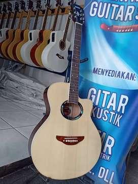 Gitar akustik besi