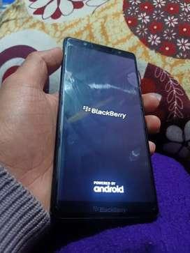 Blackberry Evolve BBG100-1